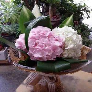 수국꽃다발